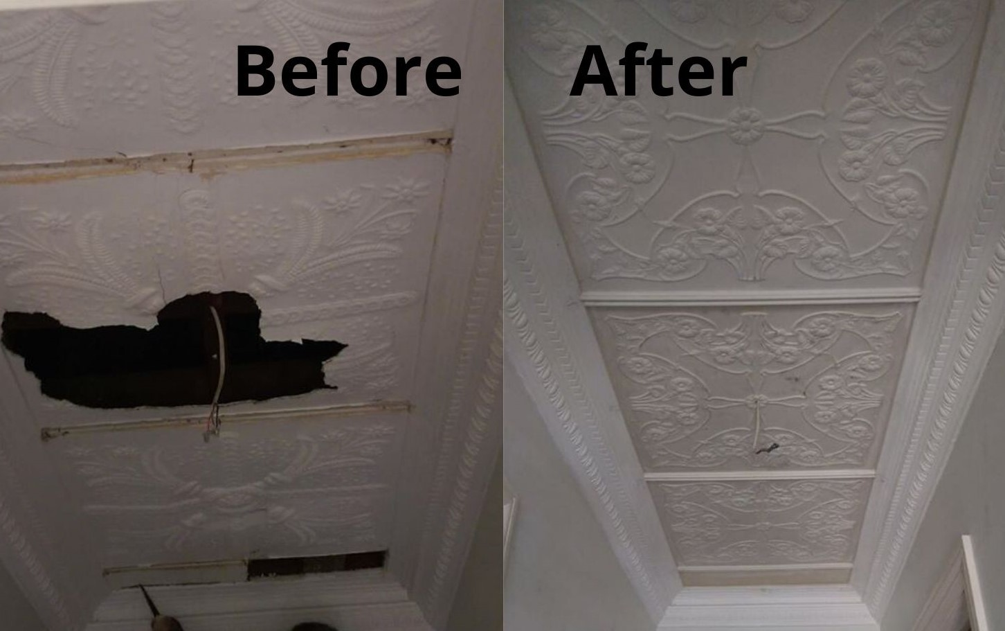 Ornate ceiling restoration repair job Balmain