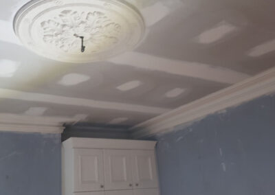 decorative ceiling restoration in Surry Hills